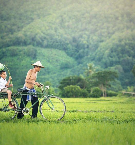 cambodia - Explore - Phonem Penh - travel treasures