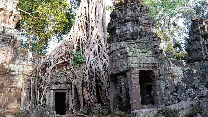 Ta Prohm - travel treasures