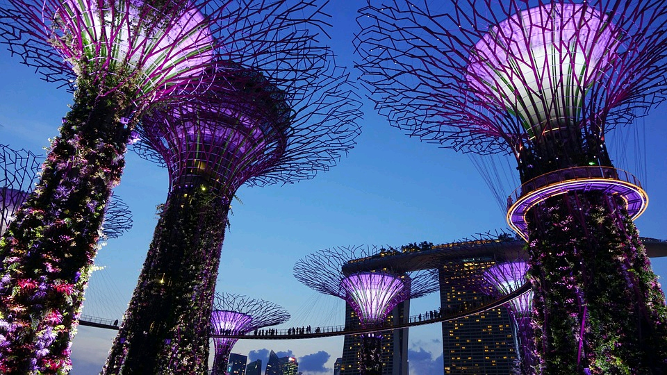 singapore Garden by the bay night spore - travel treasures